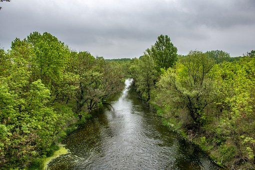 Szolnok, Jumbled River, Nature, Water, Mirroring, Green
