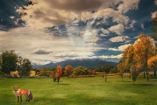 Travel, Landscape, Nature, Sky, Summer, Still