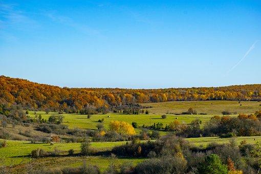 Josvafo, Landscape, Nature, Autumn, Forest, Trees