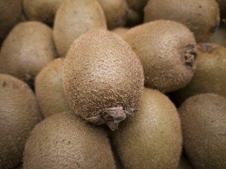 Kiwi, Fruit, Fresh, Food, Vitamins, Healthy, Diet