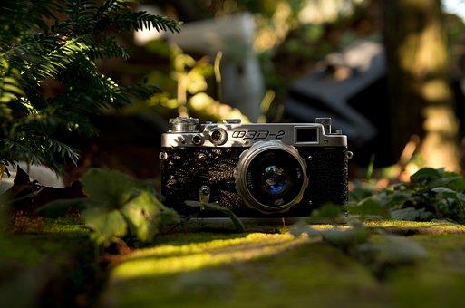Camera, Old, Antique, Light, Mood, Green, Garden