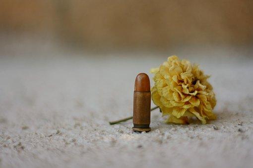 Gun, Rose, Pistol, Weapon, Love, Romance, Crime