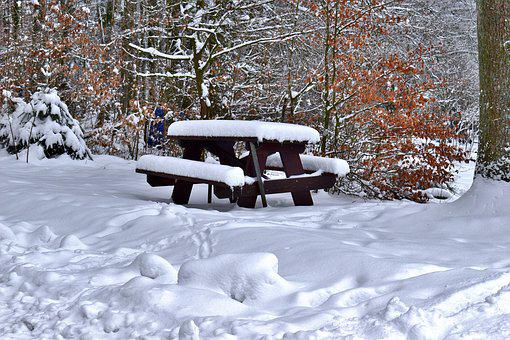 Picnic Bench, Nature, Snow, Picnic, Cold, Forest, Snowy