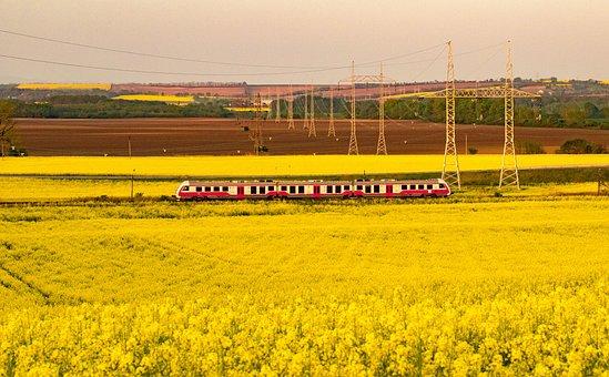 Rape, Travel, Train, Oilseed Rape, Spring, Nature