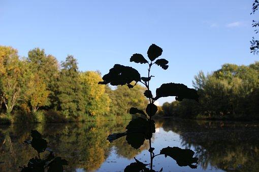 Bremen, Vahr, Berlin Freedom, Vahrer Lake, Nature