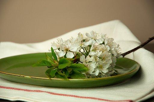 Flowers, Green, Spring, Blossom, Plate, Spring Flowers
