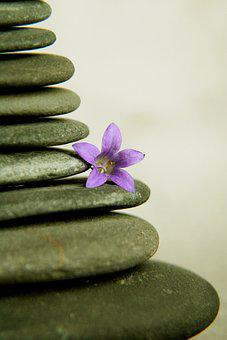 Stones, Pyramid, Meditation, Blossom, Bloom, Decoration