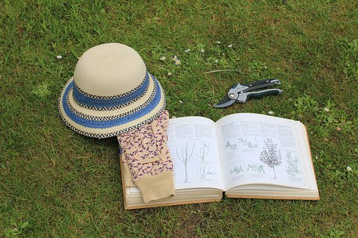 Gardening, Book, Sun Hat, Garden Gloves, Read, Header