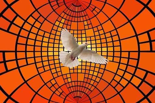 Dove, District, Light, Holy Spirit, Pentecost, Religion