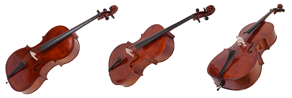 Cello, Bow, Stringed Instruments, Music