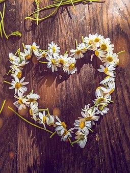 Love, Heart, Romantic, Happiness, Romance, Valentine