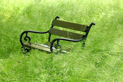 Bench, Grass, Green, Spring, Wiosennie, Quiet, Nature