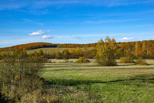 Hungary, Trizs, Landscape, Nature, Autumn, Peaceful
