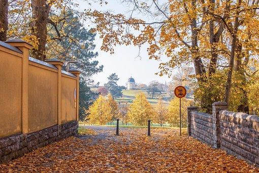 Fall, Autumn, Leaves, Colorful, Mood, Season, October