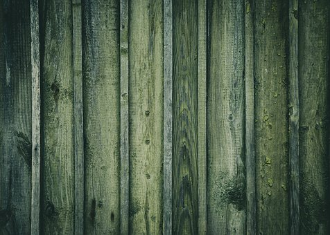 Wooden, Timber, Wall, Old Shed, Green Wall