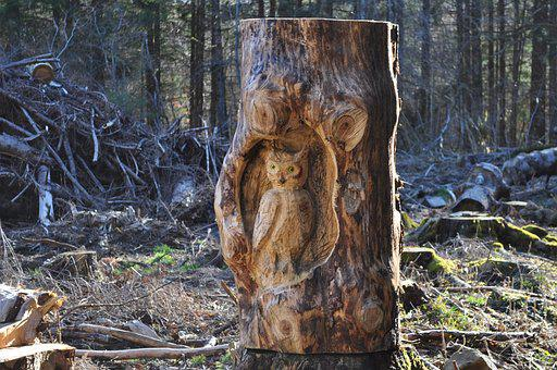 Wood, Sculpture, Bird, Owl, Nature, Forest, Auvergne
