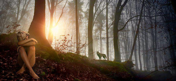Fantasy, Forest, Girl, Wolf, Nature, Landscape, Trees