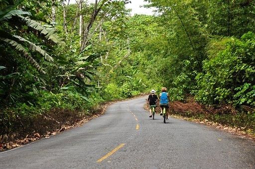 Panama, Bocas Del Toro, Bike, Ride, Road, Jungle