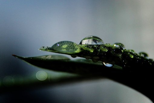 Raindrops, The Water Droplets, Water Droplets Sound