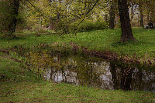 Landscape, Park, Nature, The Picturesque, Panorama