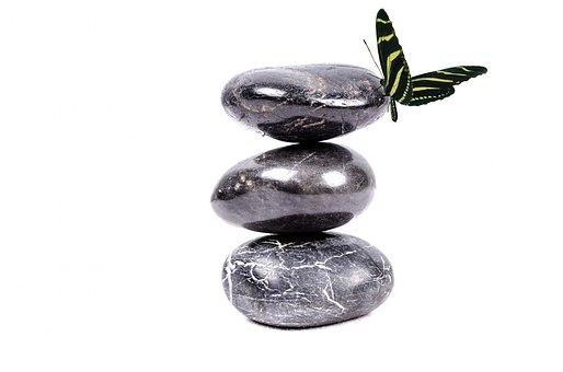Stone, Zen, White, Spa, Rock, Black, Plant, Alternative