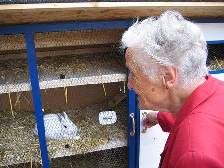 Woman, Old, Grandma, Hare, Rabbit Hutch, Dependent