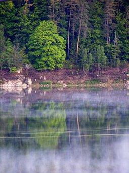 Bavaria, Upper Palatinate, Lake, Lichtspiel, Purple