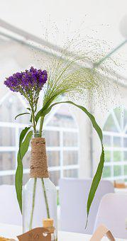 Deco, Wedding, Flower, Glass, Decoration, Background