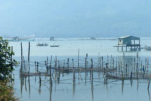 Vietnam, Fisherman, Fishing, Water, Landscape, Blue