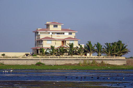 Mansion, Bungalow, House, Waterside, Wetland, Idyllic