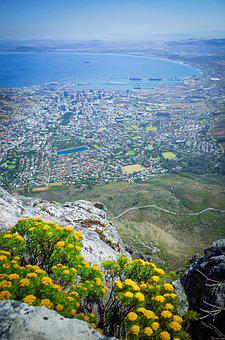 Aerial, Coastline, View, South Africa, Africa