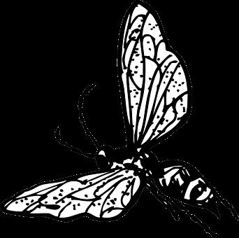 Yellow, Jacket, Wasp, Cartoon, Illustratoin, Insect