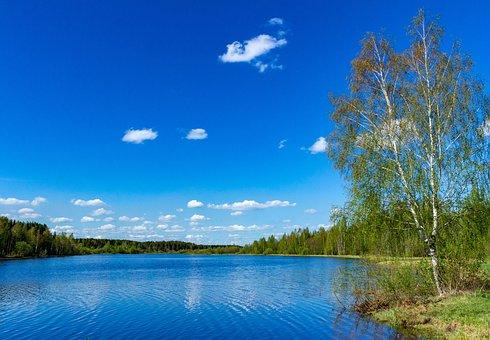 River, Riverside, Water Reservoir, Nature, Summer
