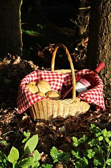 Forest, Basket, Wine, Red Wine, Rotkäppchen