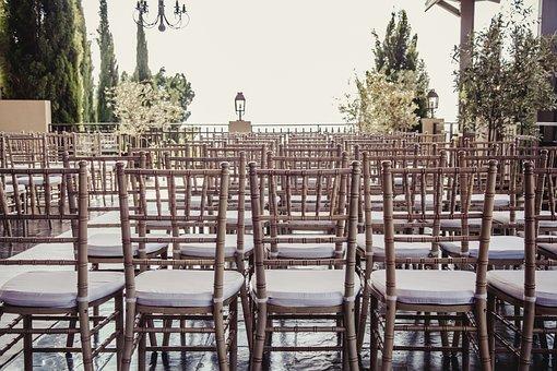 Chairs, Decor, Trees, Decoration