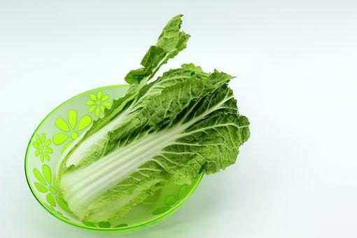 Beijing Cabbage, Chinese Cabbage, Food, Product, White