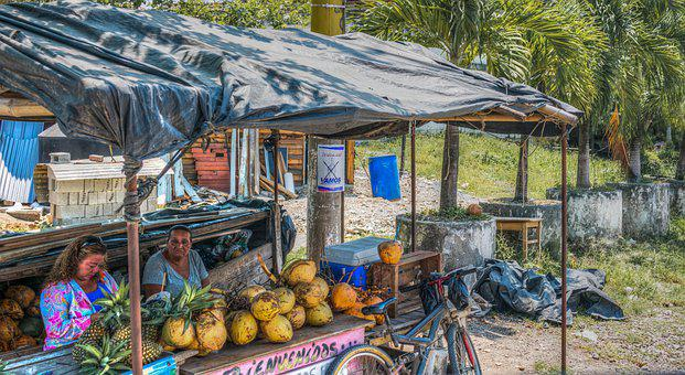 Fruit Stand, Guatemala, Pineapple, Coconut, Tropical