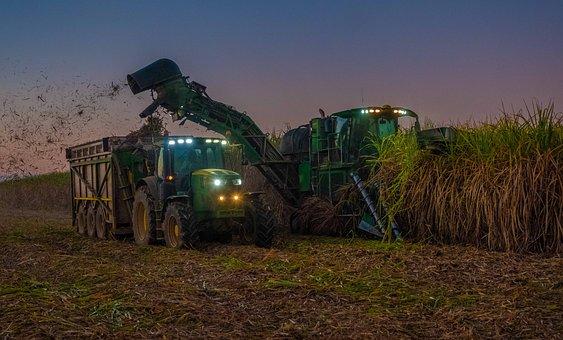 Tractor, John Deere, Sugar, Sugar Cane, Harvesting