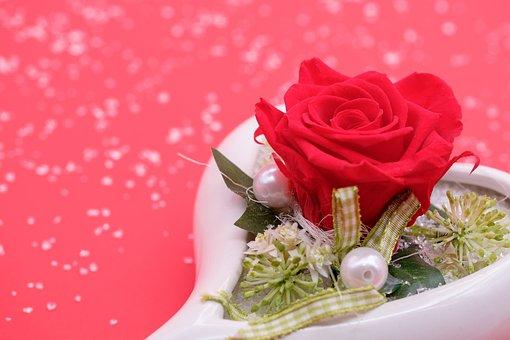 Rose, Blossom, Bloom, Flower, Heart, Romance, Love