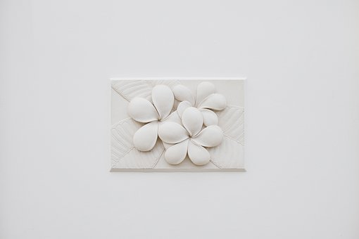 Wall, Flower, White, Rawadee, Sculpture, Plumeria