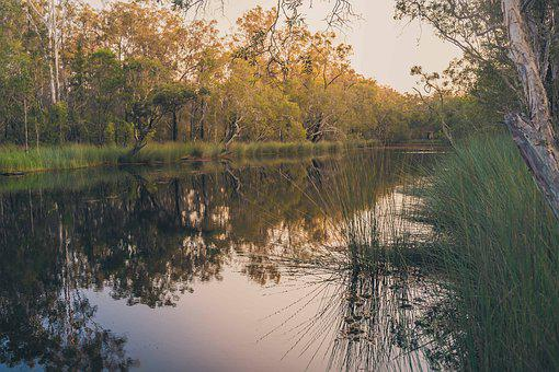 Sun, Lake, Lagoon, Water, Nature