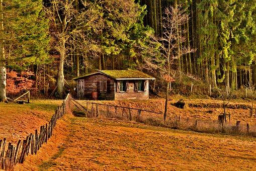 Boshuis, Chalet, Boshut, Wooden House, Forest, Nature