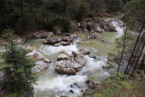 River, Rock, Pierre, Creek, Water, Mountain, Forest