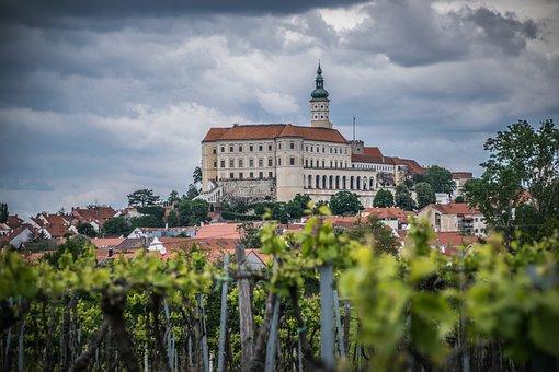 Vineyard, Castle, Viticulture, Architecture, Foliage