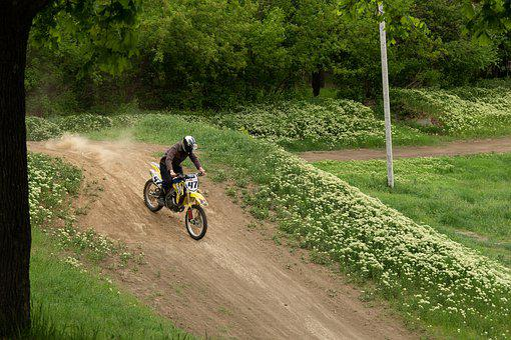 Greens, Leaves, Motocross, Motorcycle, Spring, Green