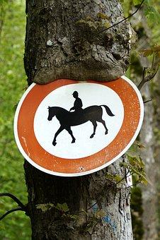 Horse Riding Prohibited, Tree, Horses Prohibited, Ride