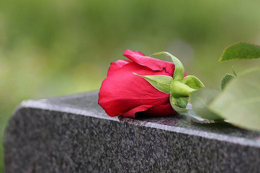 Single Red Rose, Black Marble, Love Symbol, Gravestone
