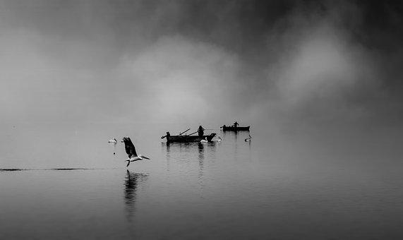 Boats, Fishers, Black White, Fisher, Fisherman, Water
