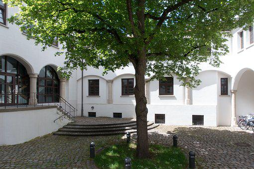 Courtyard, Tree, Architecture, Old, Building, Mansion