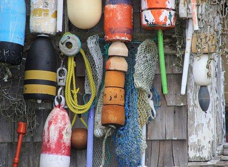 Boje, Lobster, Lobster Fishermen, Fall, Buoys, Swimmer